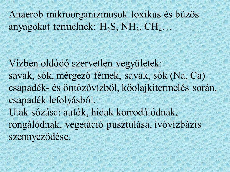 Anaerob mikroorganizmusok toxikus és bűzös anyagokat termelnek: H2S, NH3, CH4…