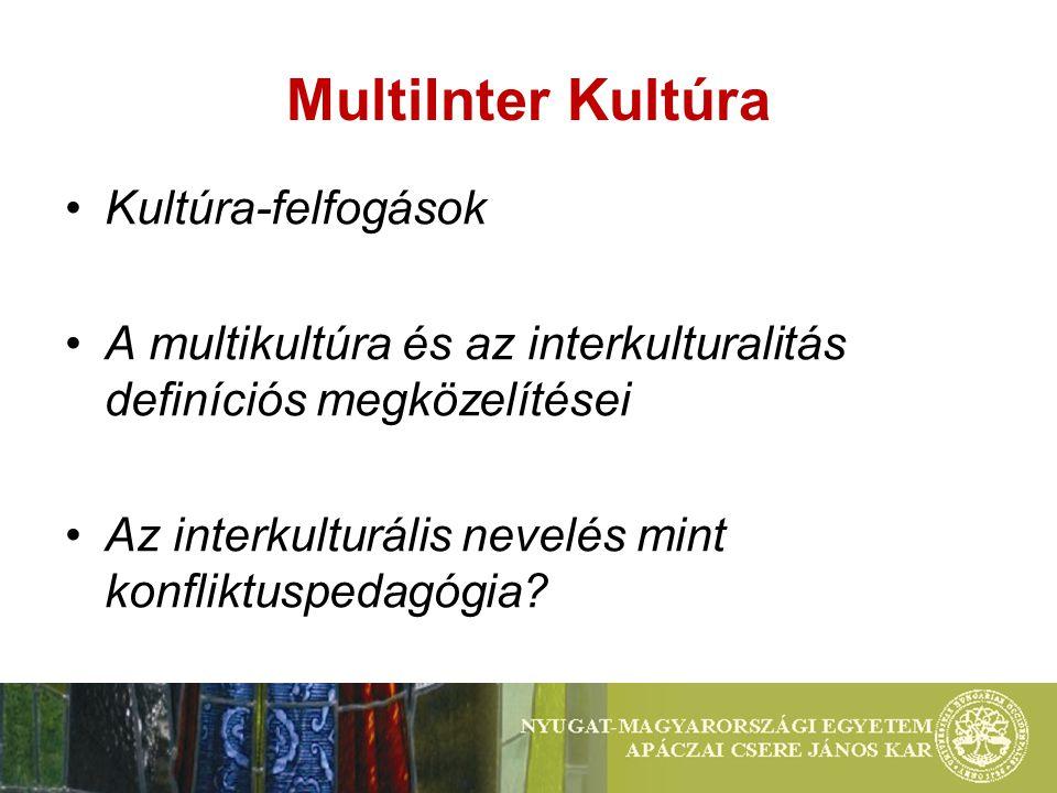 MultiInter Kultúra Kultúra-felfogások