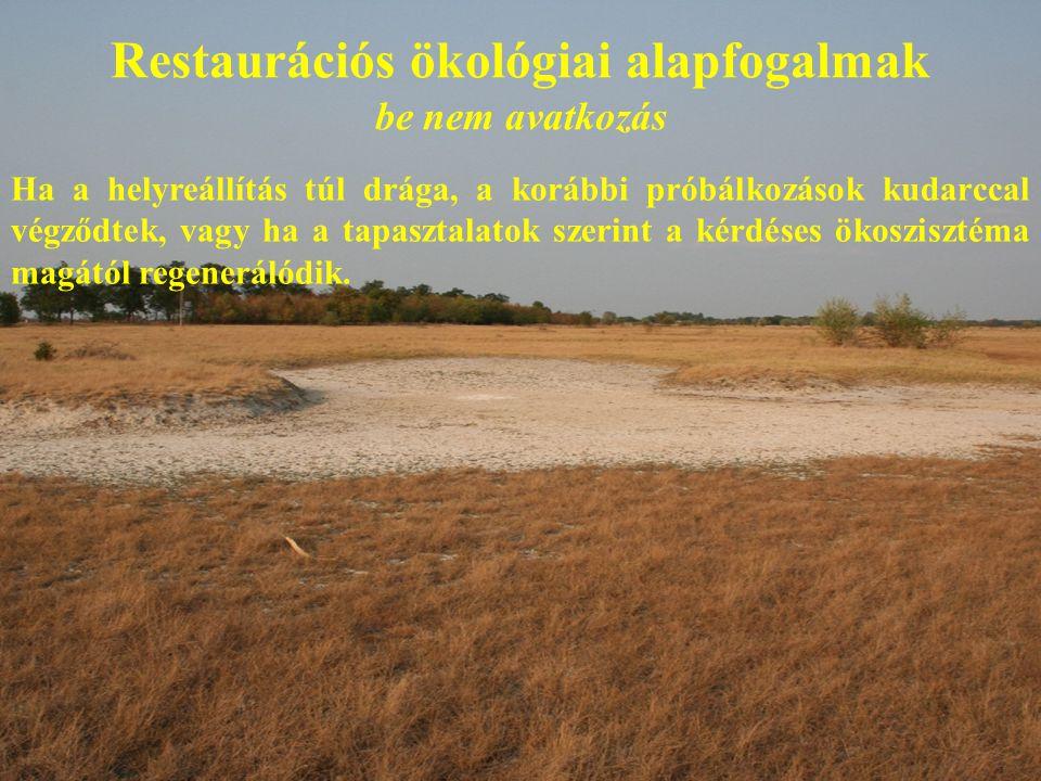 Restaurációs ökológiai alapfogalmak be nem avatkozás