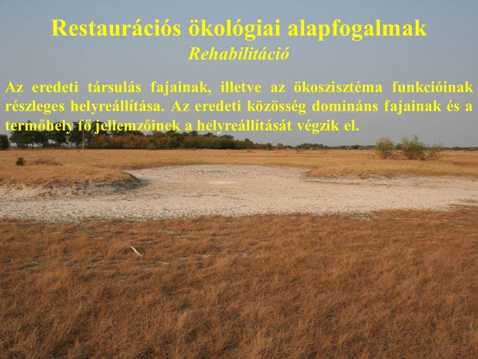 Restaurációs ökológiai alapfogalmak Rehabilitáció