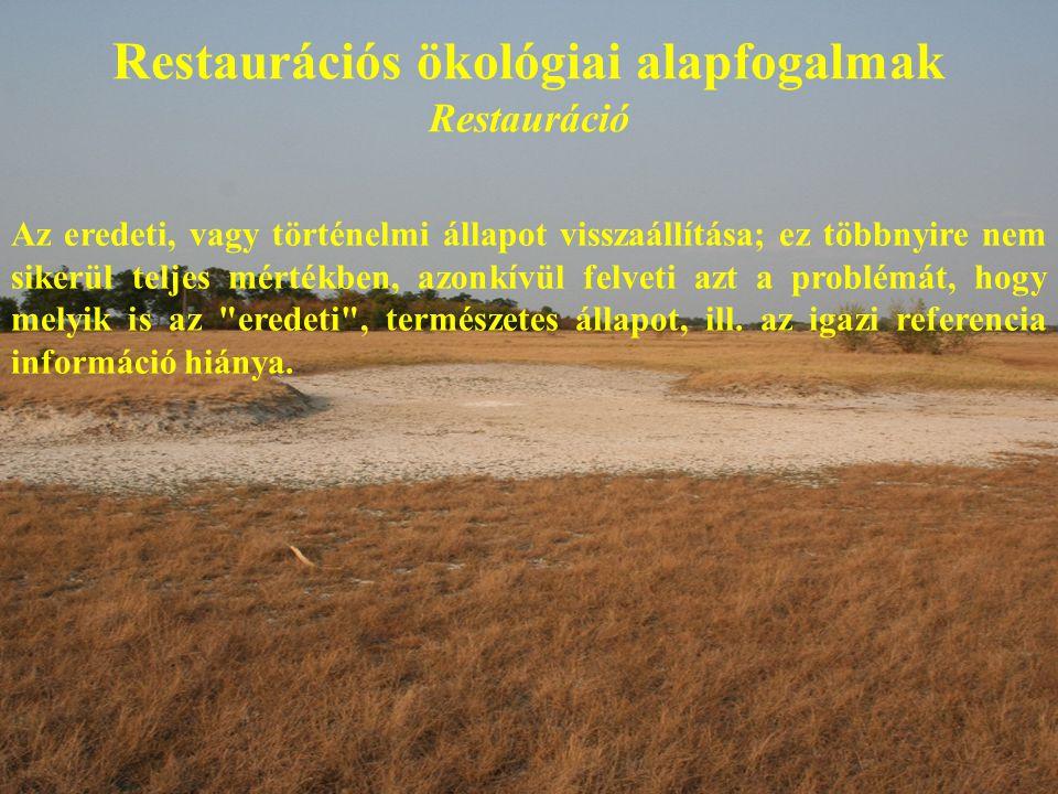 Restaurációs ökológiai alapfogalmak Restauráció