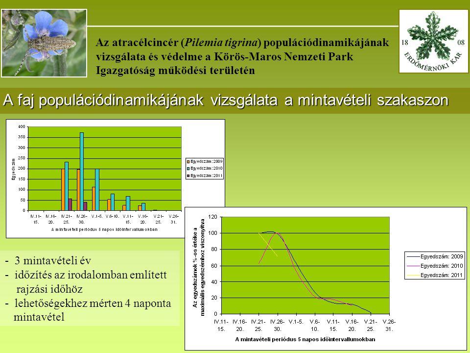 A faj populációdinamikájának vizsgálata a mintavételi szakaszon