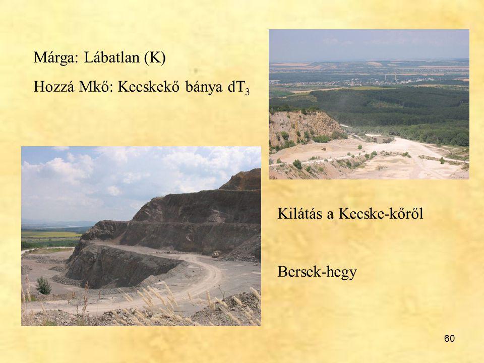 Márga: Lábatlan (K) Hozzá Mkő: Kecskekő bánya dT3 Kilátás a Kecske-kőről Bersek-hegy