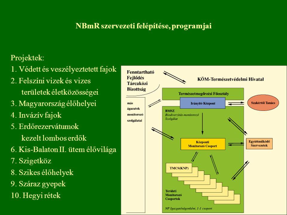 NBmR szervezeti felépítése, programjai
