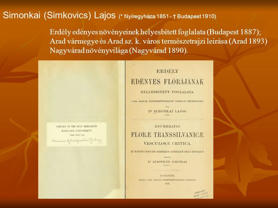 Simonkai (Simkovics) Lajos (* Nyíregyháza 1851 - † Budapest 1910)