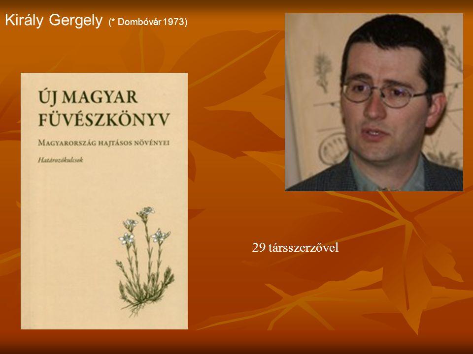 Király Gergely (* Dombóvár 1973)