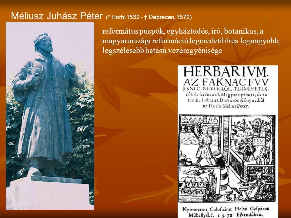 Méliusz Juhász Péter (* Horhi 1532 - † Debrecen, 1572)