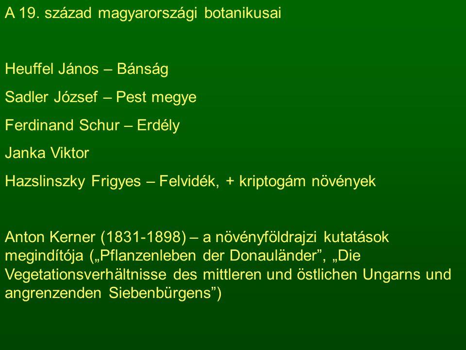 A 19. század magyarországi botanikusai