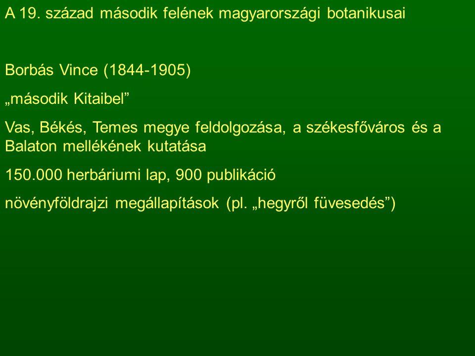 A 19. század második felének magyarországi botanikusai