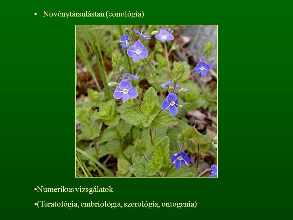 Növénytársulástan (cönológia)