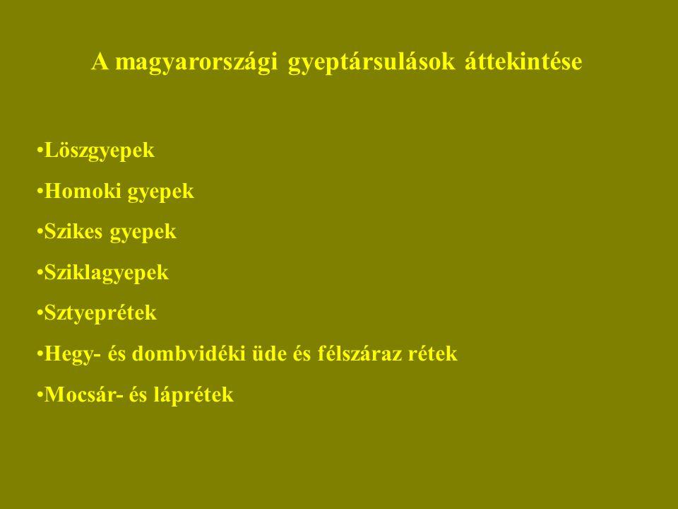 A magyarországi gyeptársulások áttekintése