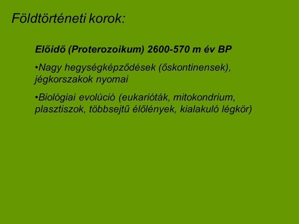 Földtörténeti korok: Előidő (Proterozoikum) 2600-570 m év BP