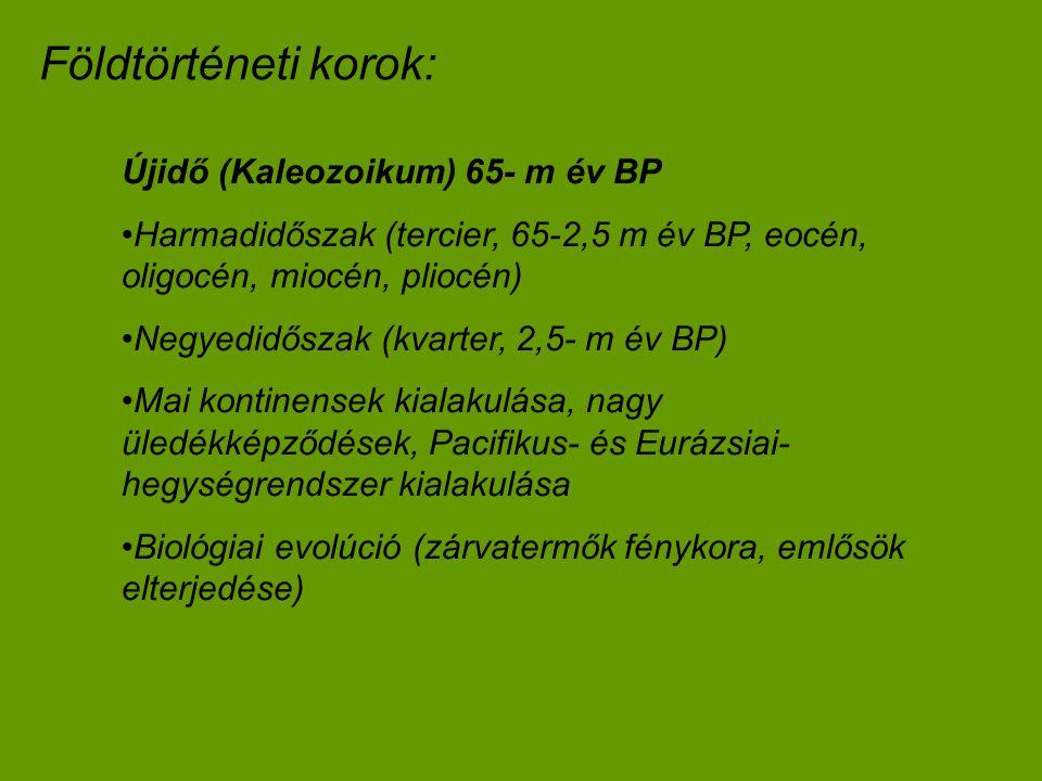 Földtörténeti korok: Újidő (Kaleozoikum) 65- m év BP