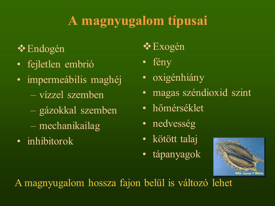 A magnyugalom típusai Exogén Endogén fény fejletlen embrió oxigénhiány