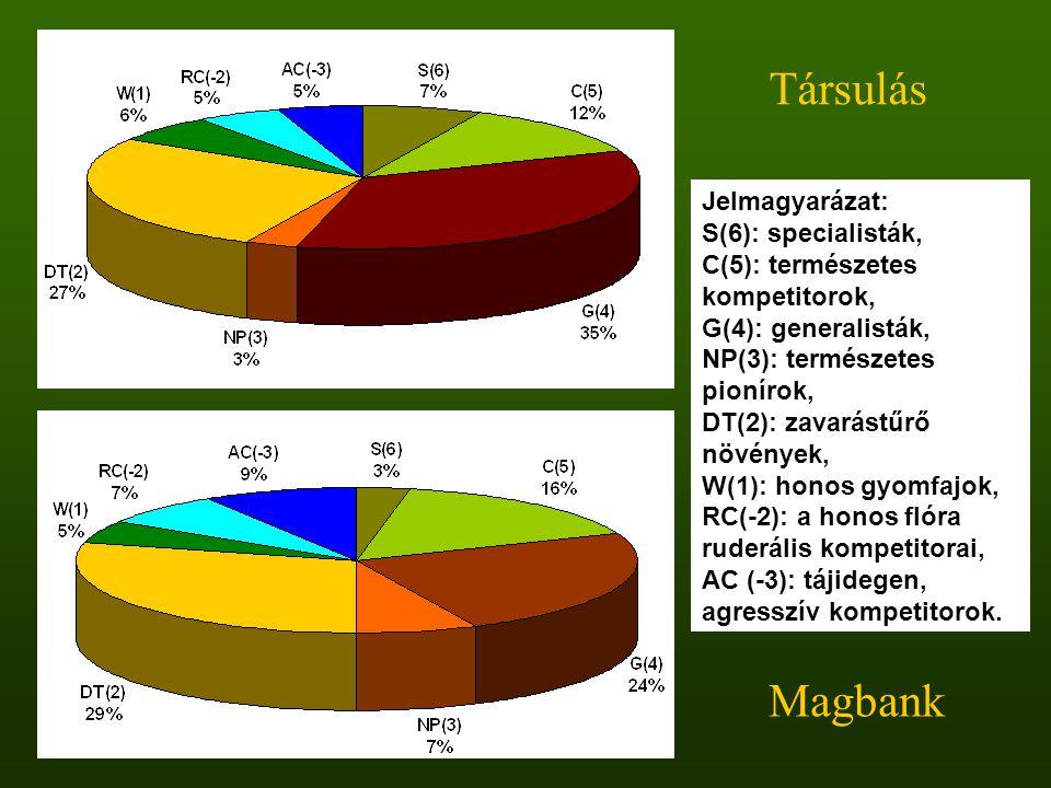 Társulás Magbank Jelmagyarázat: S(6): specialisták,