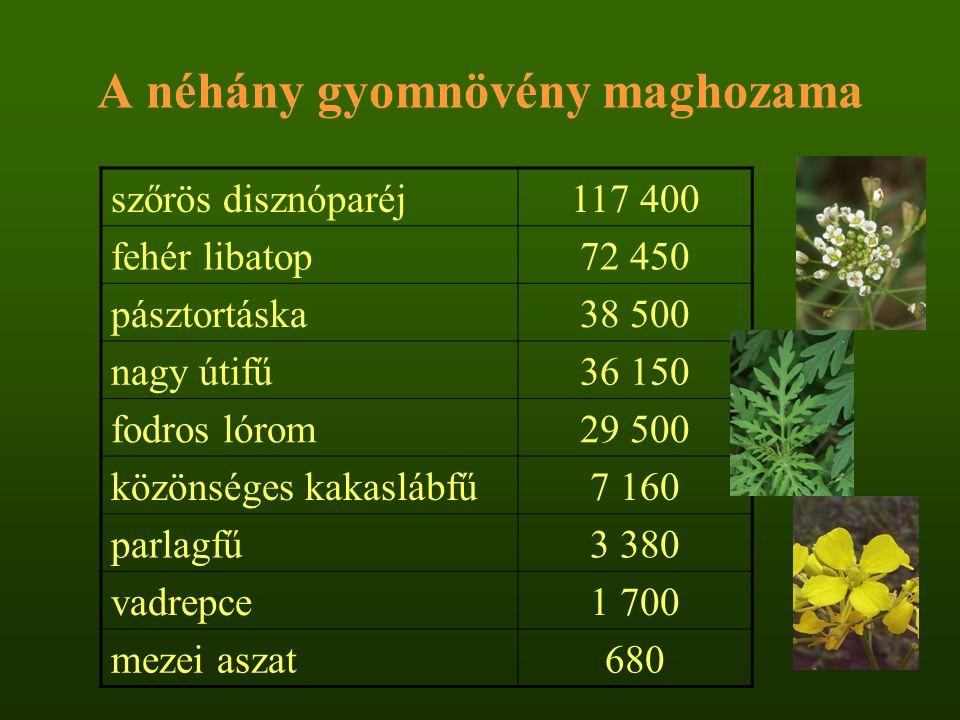 A néhány gyomnövény maghozama