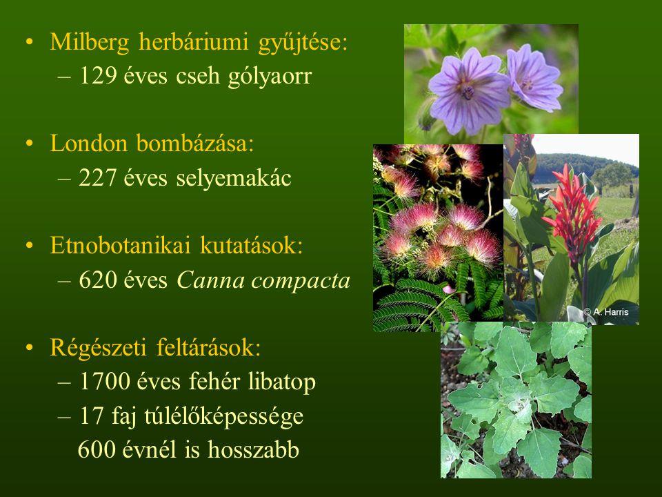 Milberg herbáriumi gyűjtése: