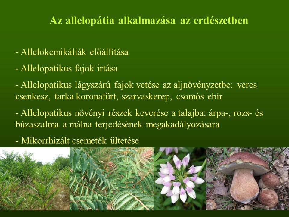 Az allelopátia alkalmazása az erdészetben