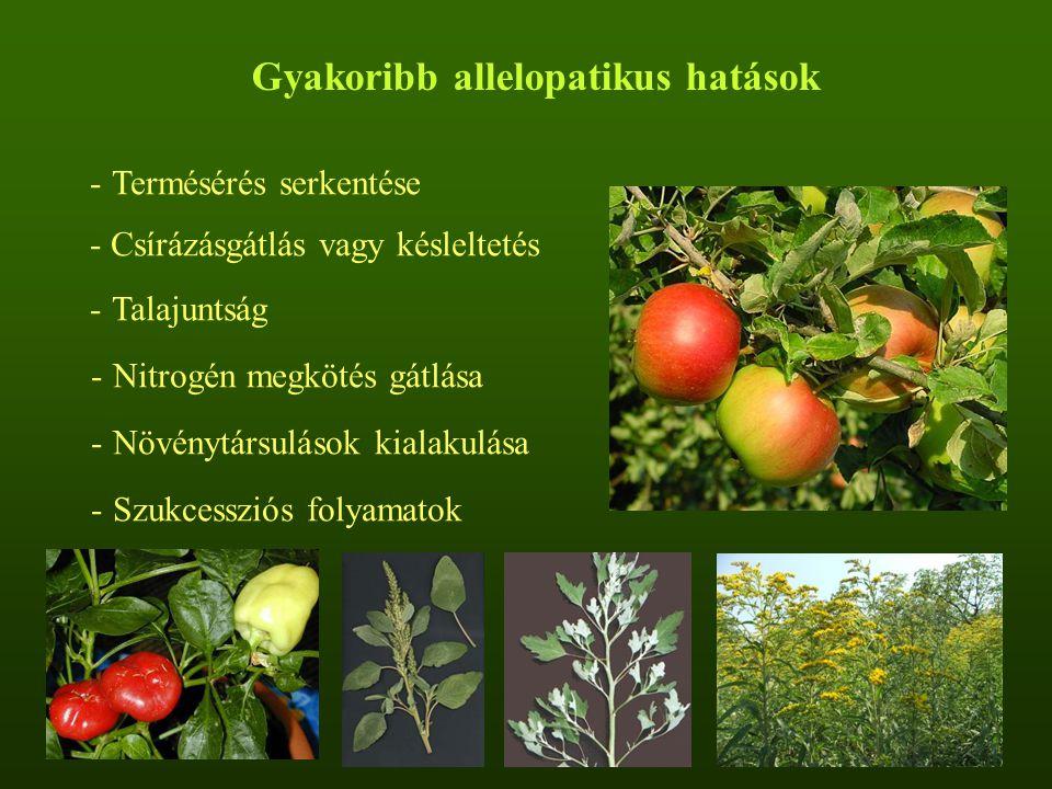 Gyakoribb allelopatikus hatások
