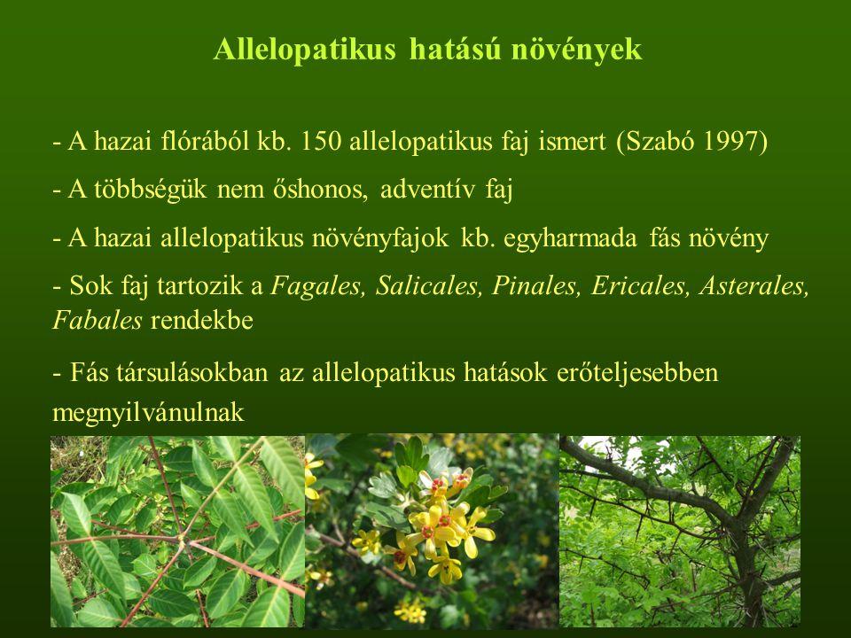 Allelopatikus hatású növények