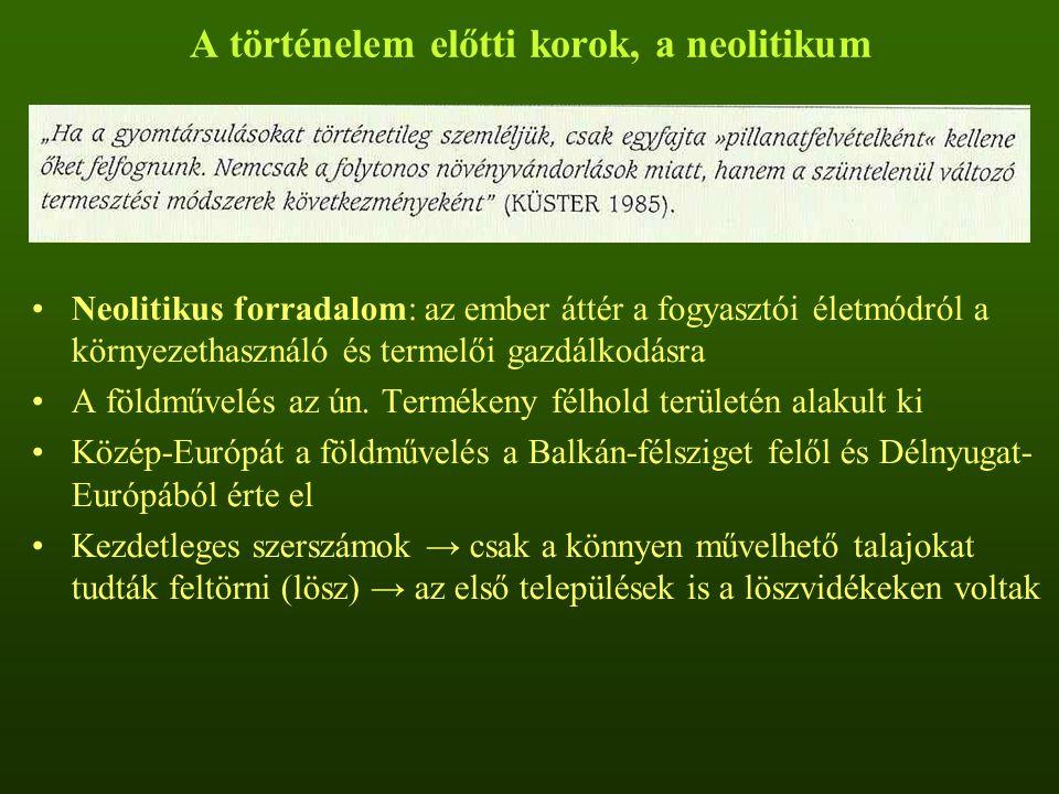 A történelem előtti korok, a neolitikum
