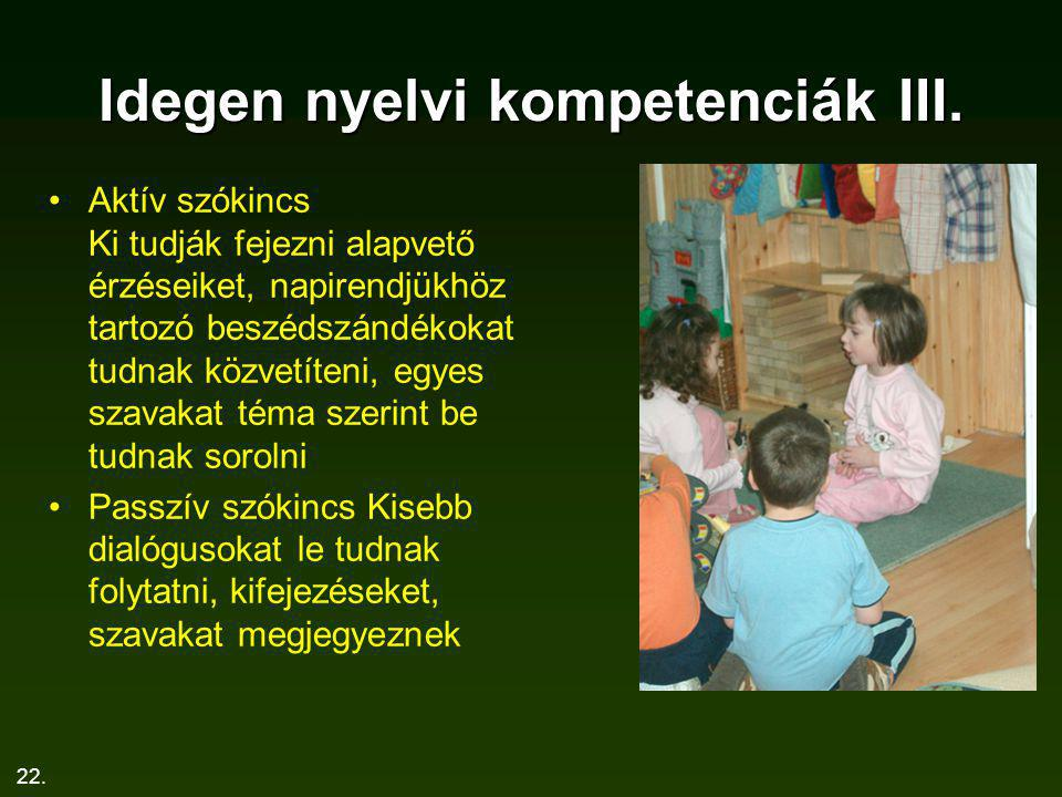 Idegen nyelvi kompetenciák III.