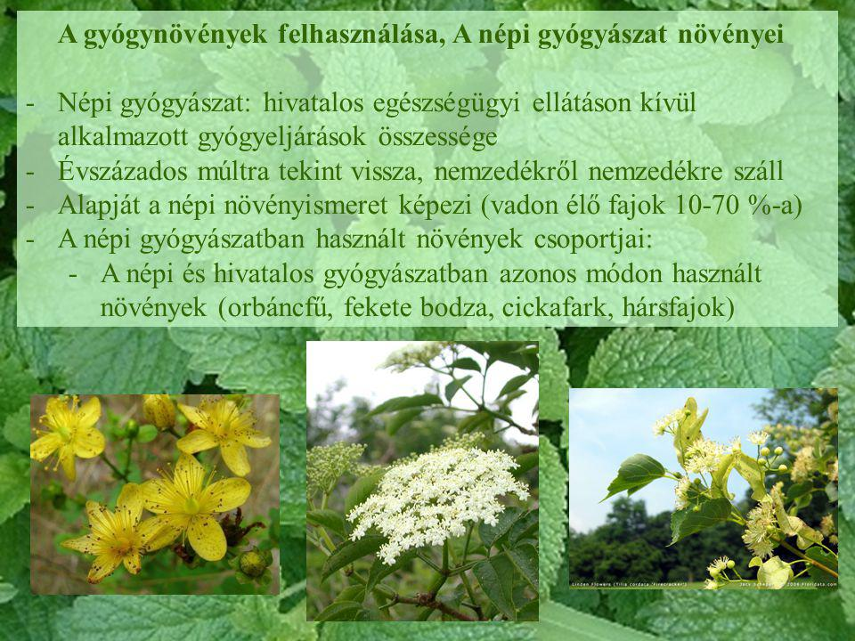 A gyógynövények felhasználása, A népi gyógyászat növényei