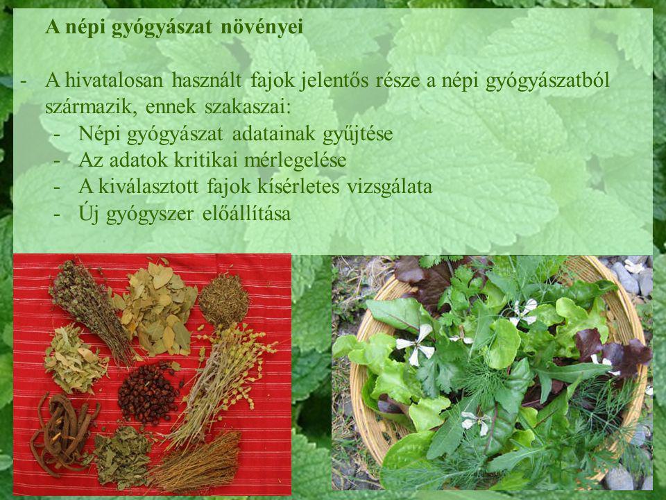 A népi gyógyászat növényei