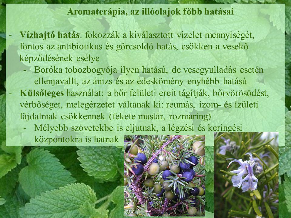 Aromaterápia, az illóolajok főbb hatásai