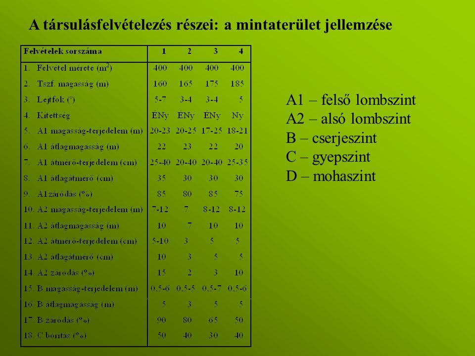 A társulásfelvételezés részei: a mintaterület jellemzése