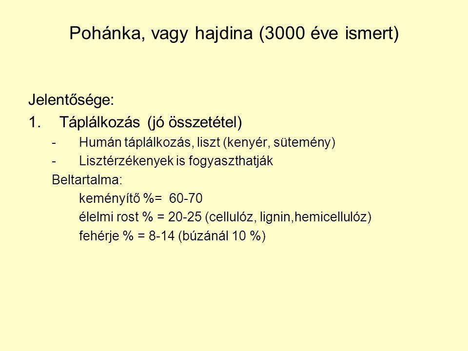 Pohánka, vagy hajdina (3000 éve ismert)