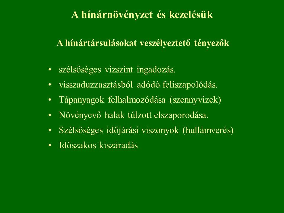 A hínárnövényzet és kezelésük