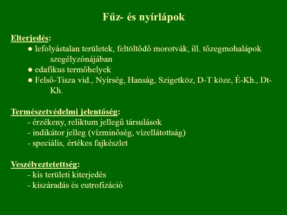 Fűz- és nyírlápok Elterjedés: