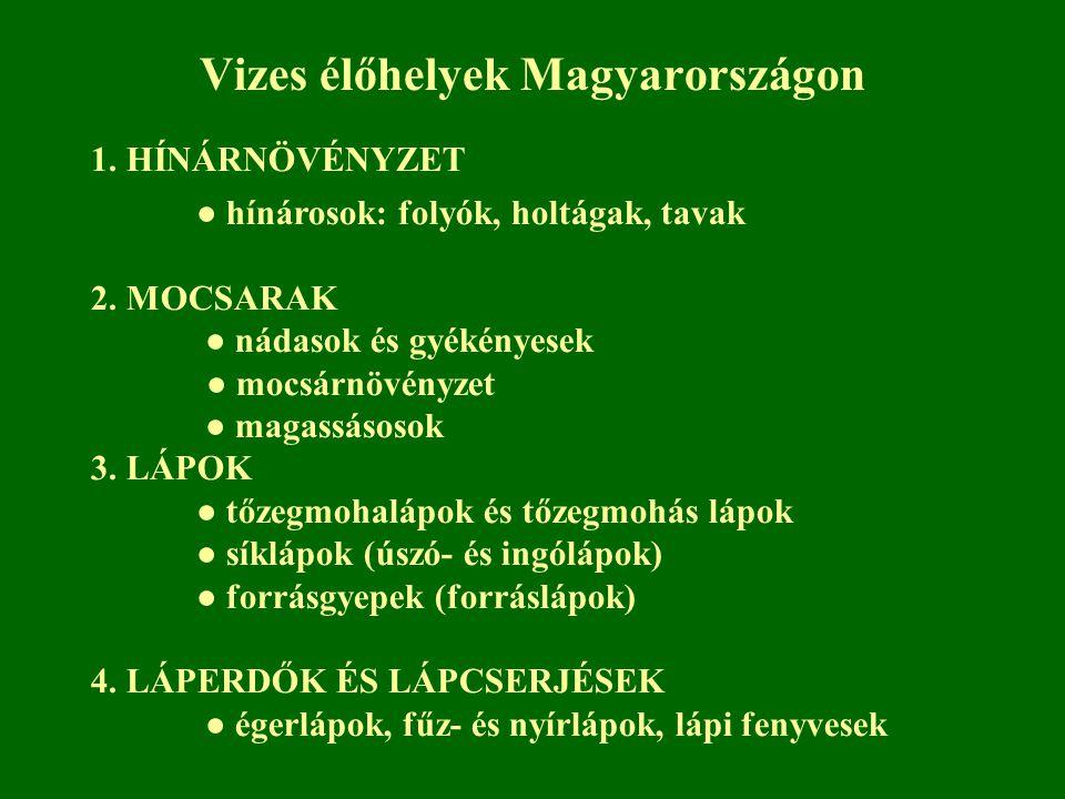 Vizes élőhelyek Magyarországon