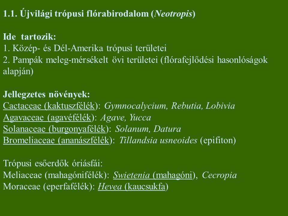 1.1. Újvilági trópusi flórabirodalom (Neotropis)