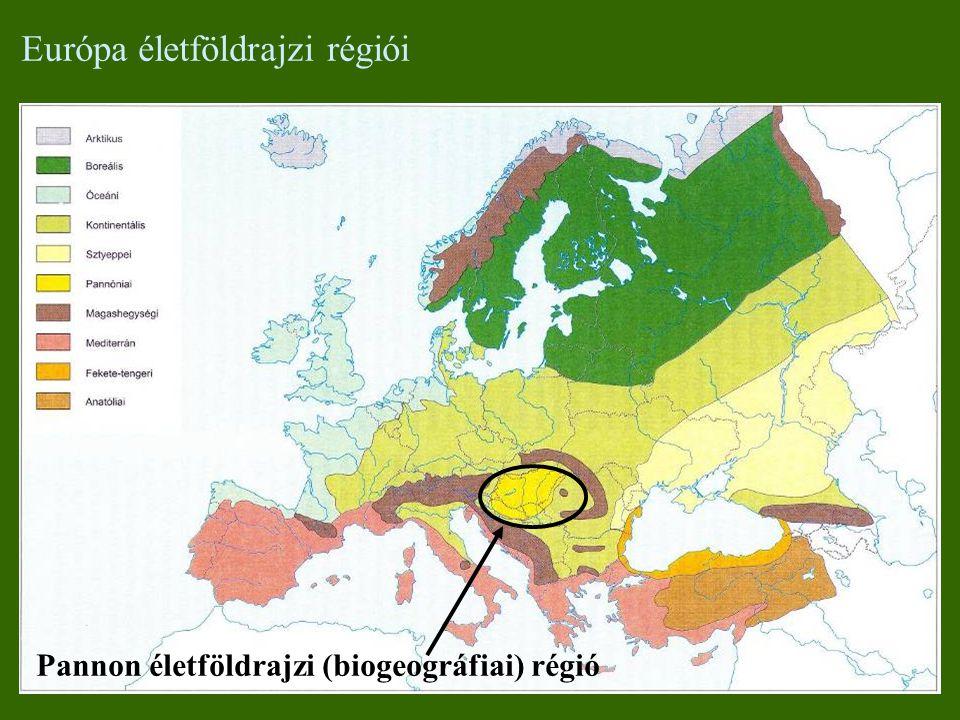 Európa életföldrajzi régiói