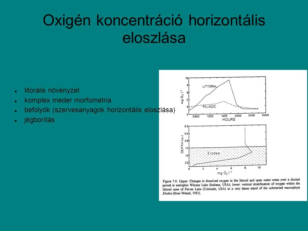 Oxigén koncentráció horizontális eloszlása