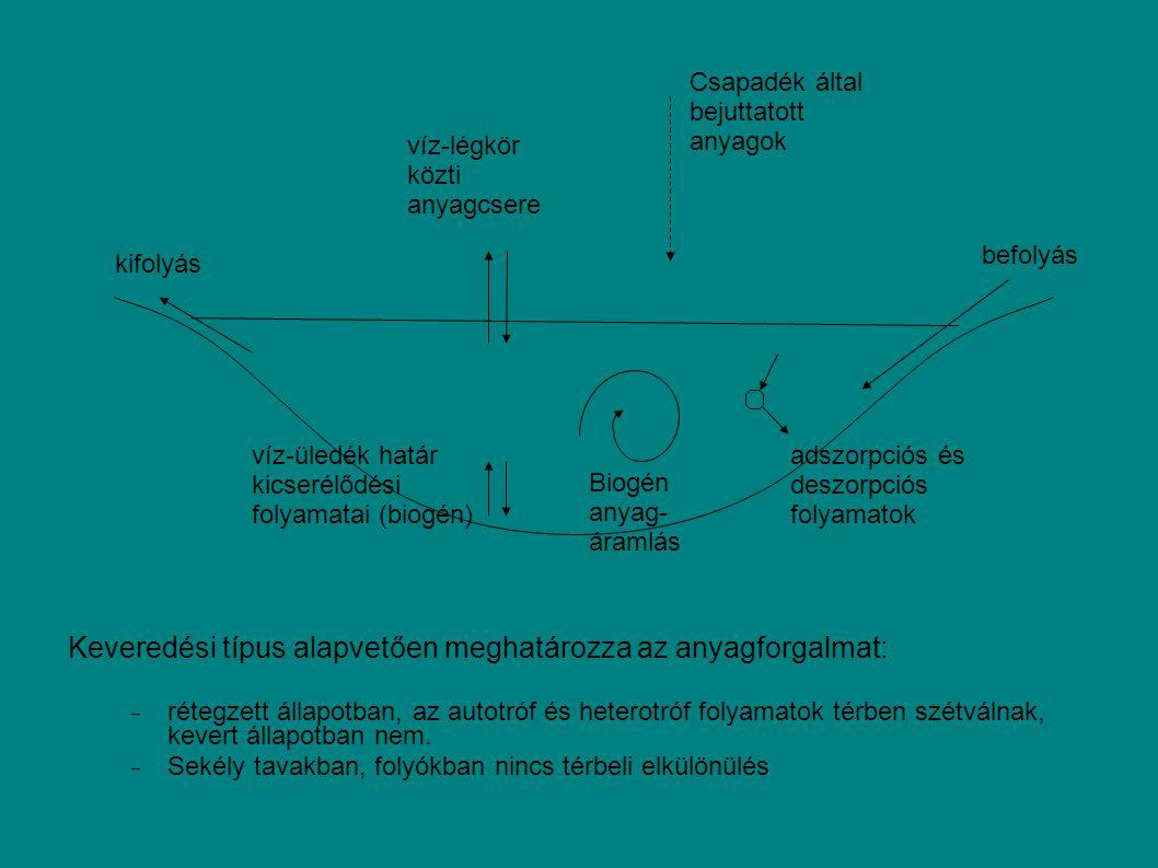 Keveredési típus alapvetően meghatározza az anyagforgalmat: