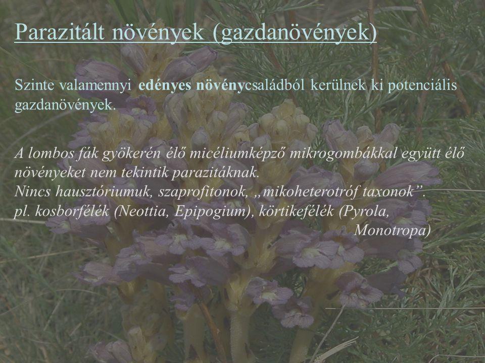Parazitált növények (gazdanövények)
