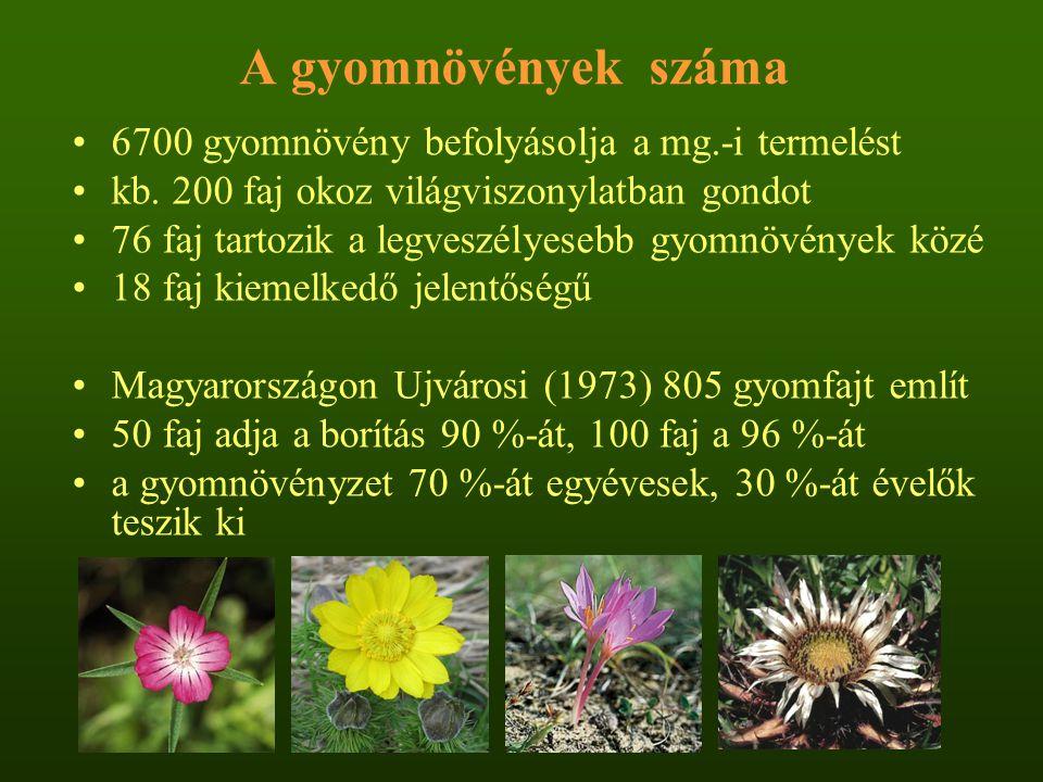 A gyomnövények száma 6700 gyomnövény befolyásolja a mg.-i termelést