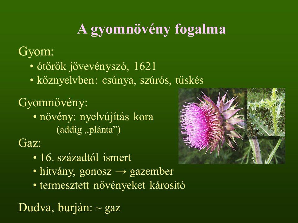A gyomnövény fogalma Gyom: Gyomnövény: Gaz: Dudva, burján: ~ gaz