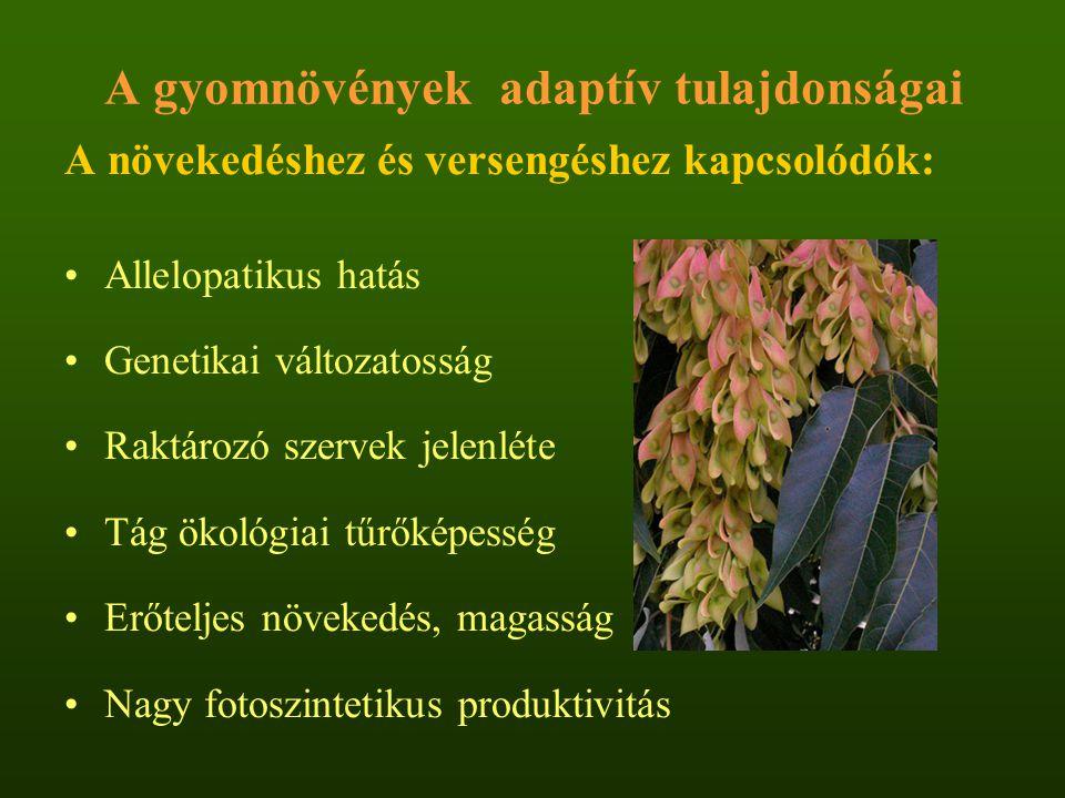 A gyomnövények adaptív tulajdonságai