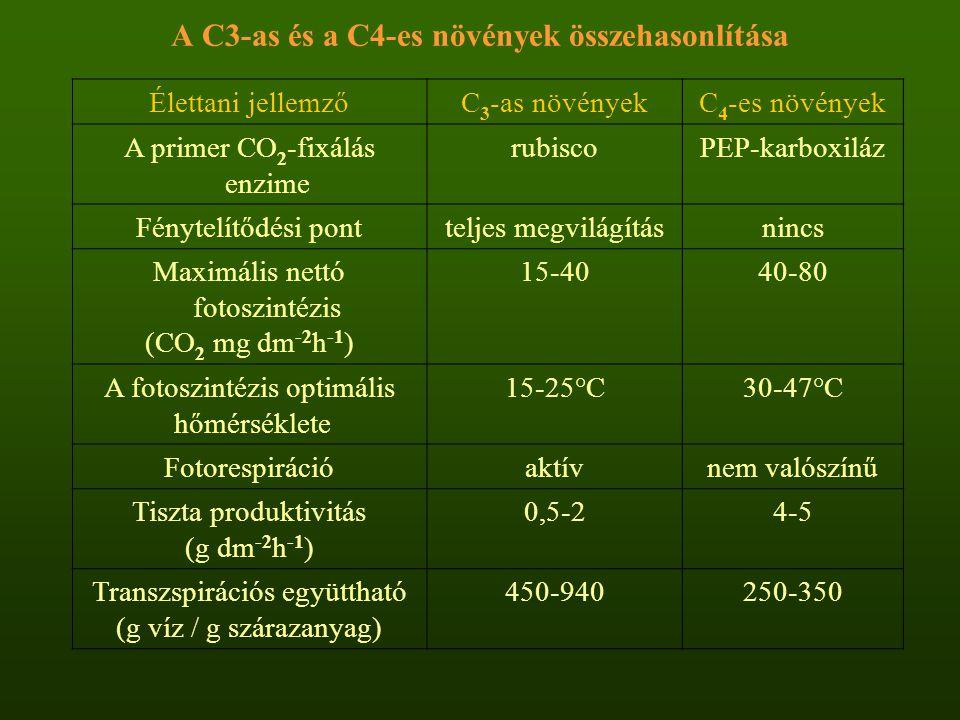 A C3-as és a C4-es növények összehasonlítása