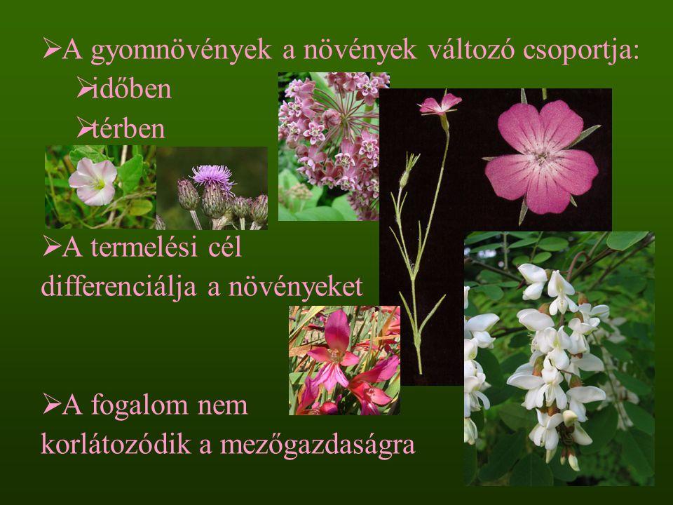A gyomnövények a növények változó csoportja: