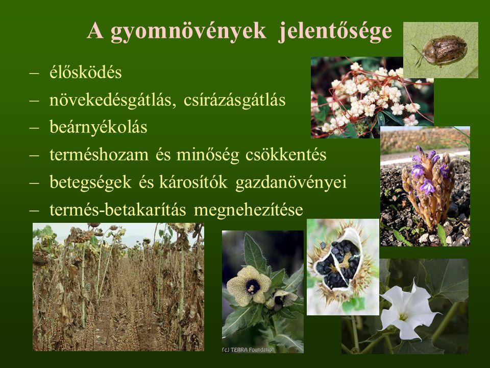 A gyomnövények jelentősége