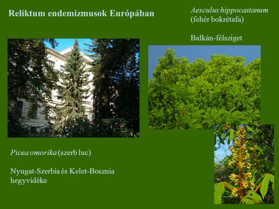Reliktum endemizmusok Európában