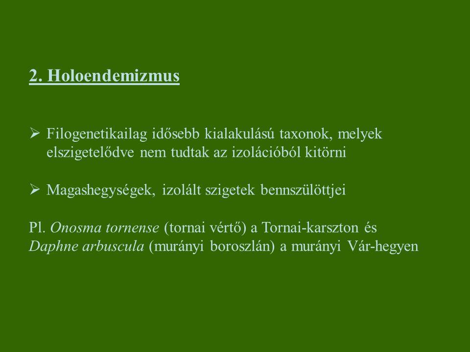 2. Holoendemizmus Filogenetikailag idősebb kialakulású taxonok, melyek elszigetelődve nem tudtak az izolációból kitörni.