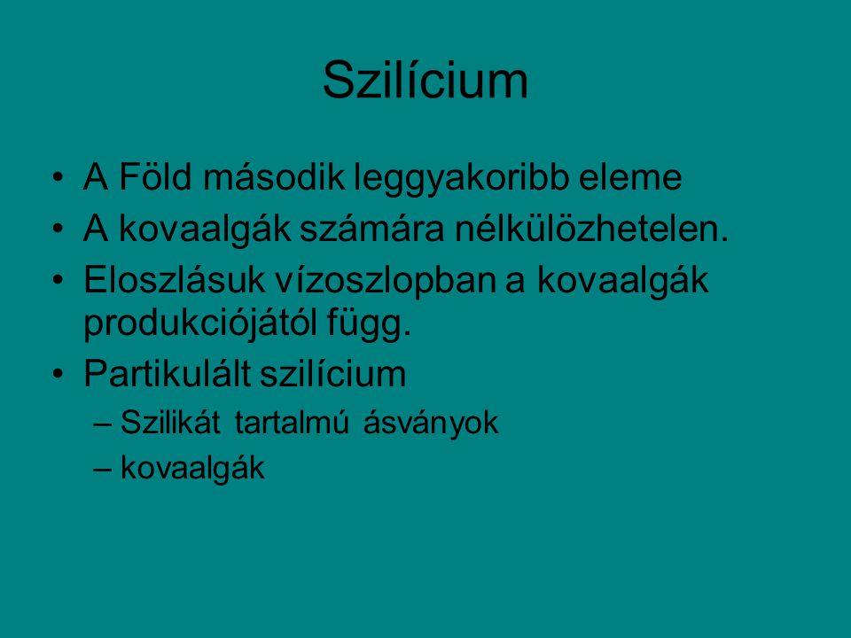 Szilícium A Föld második leggyakoribb eleme