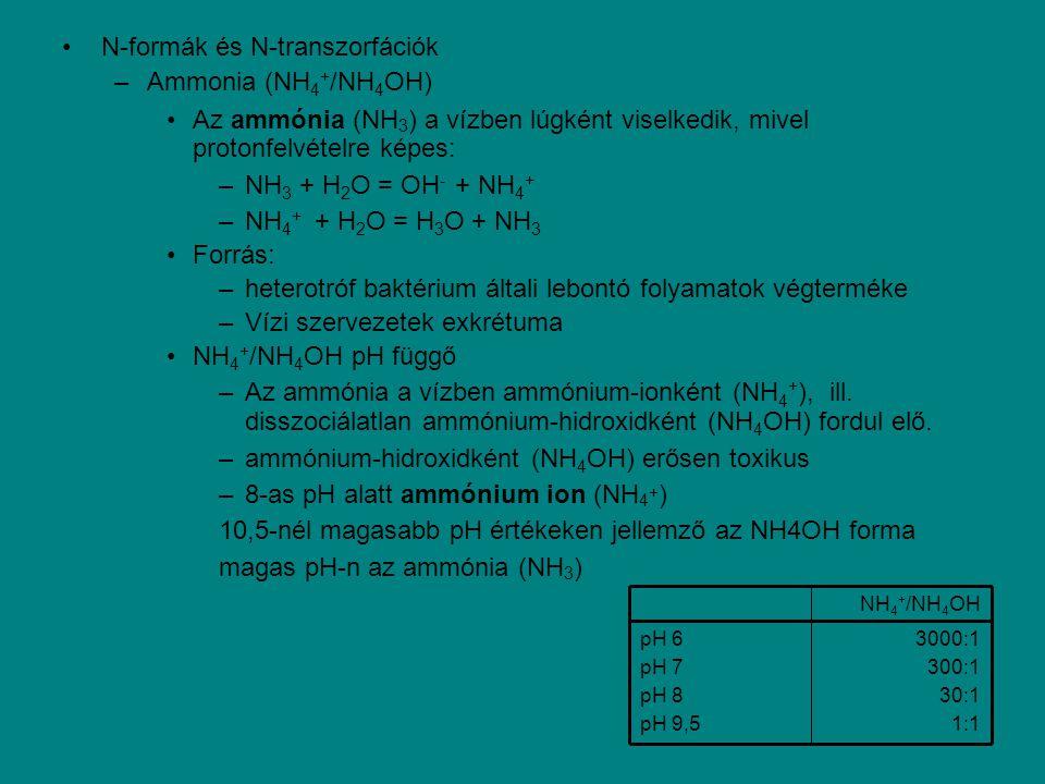 N-formák és N-transzorfációk Ammonia (NH4+/NH4OH)