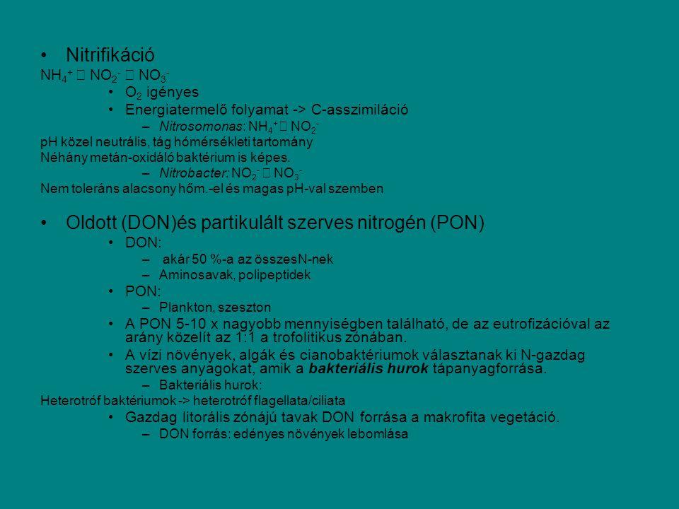 Oldott (DON)és partikulált szerves nitrogén (PON)